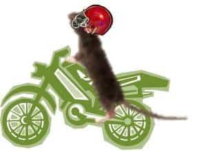 biker_mouse