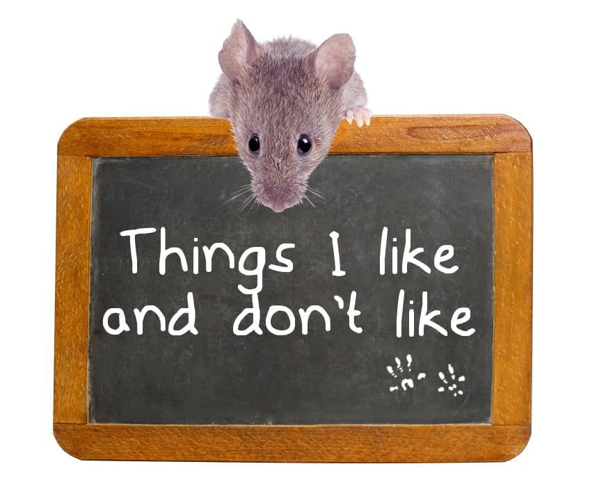 Things Mice Don't Like