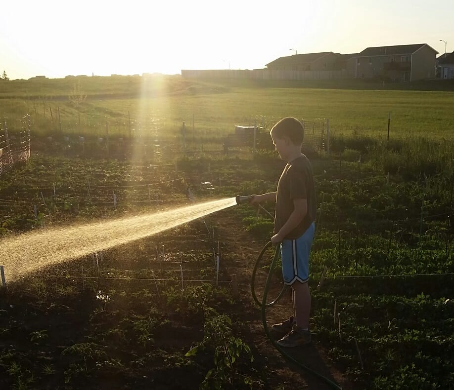 Small Boy Watering Garden