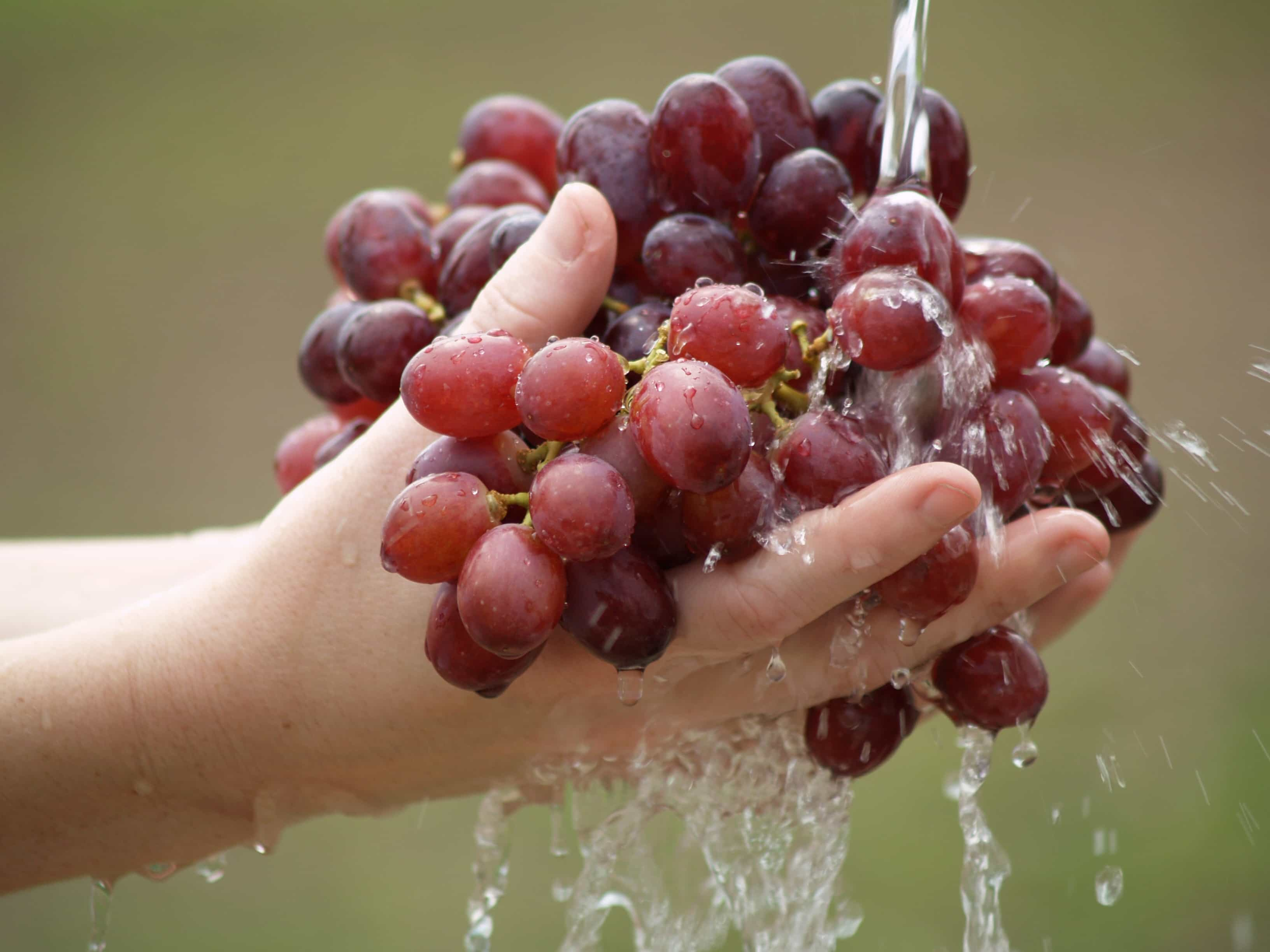 hands_grapes_washing