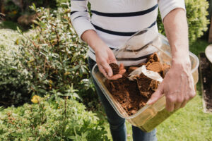 coffee grounds in the garden deter pests