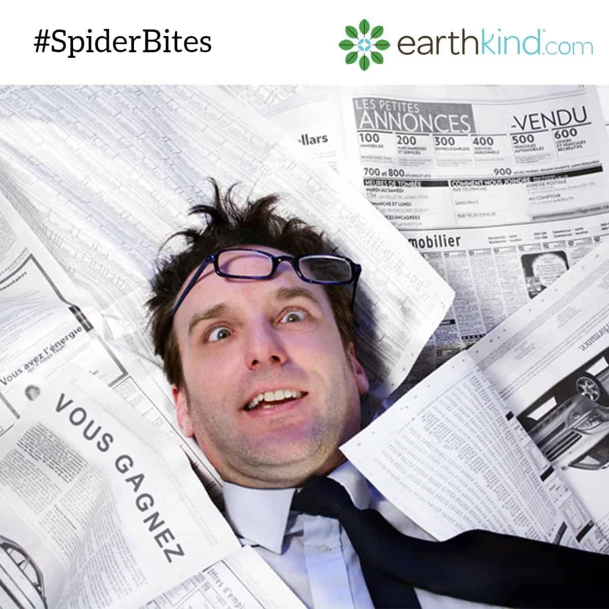 #SpiderBites