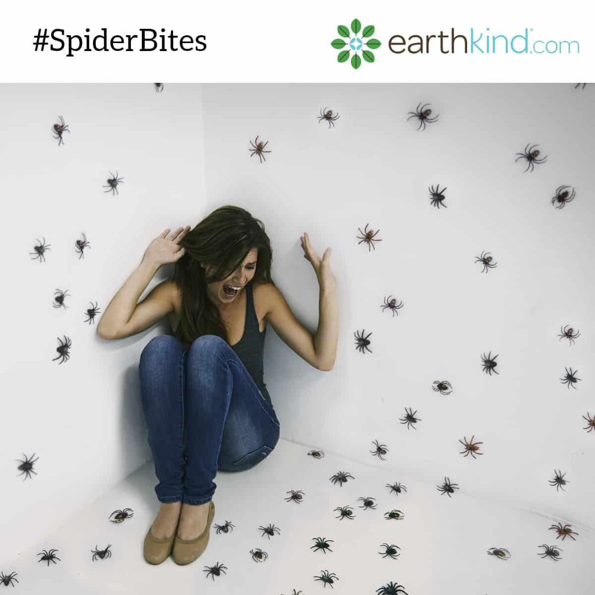 Keep Spiders Out of Your Home