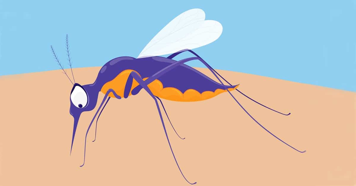 mosquito_biting_graphic_FB