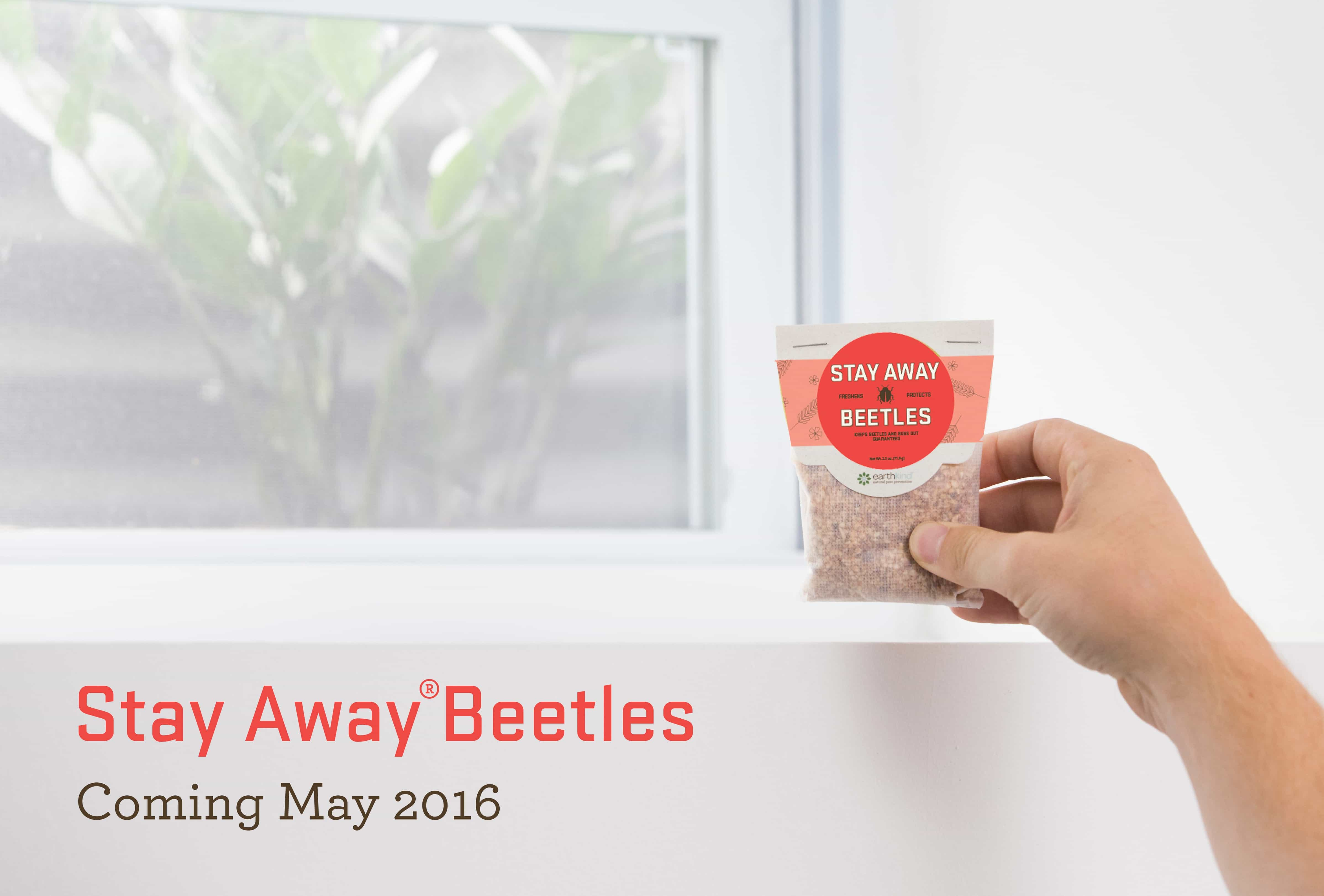 Stay_Away_Beetles_Window_Coming_May_2016.jpg