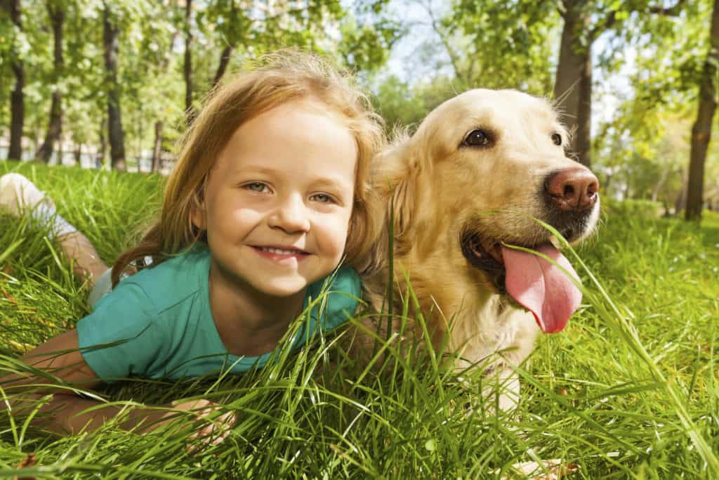 """comparing dog and child Question: why did jesus call the canaanite woman a dog answer: in matthew 15:21–28, jesus encounters a canaanite (syrophoenician) woman who begs him to cure her daughter jesus initially refuses her request by saying, """"it is not right to take the children's bread and toss it to the dogs."""