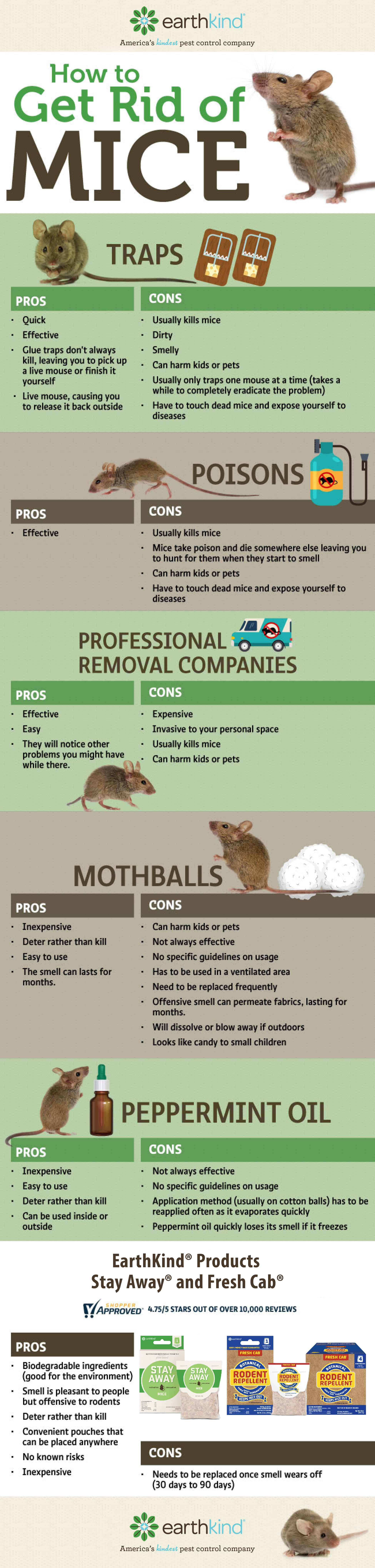 pictures How to Get Rid of Rats in Apartment Buildings