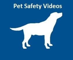 pet_safety_videos_icon