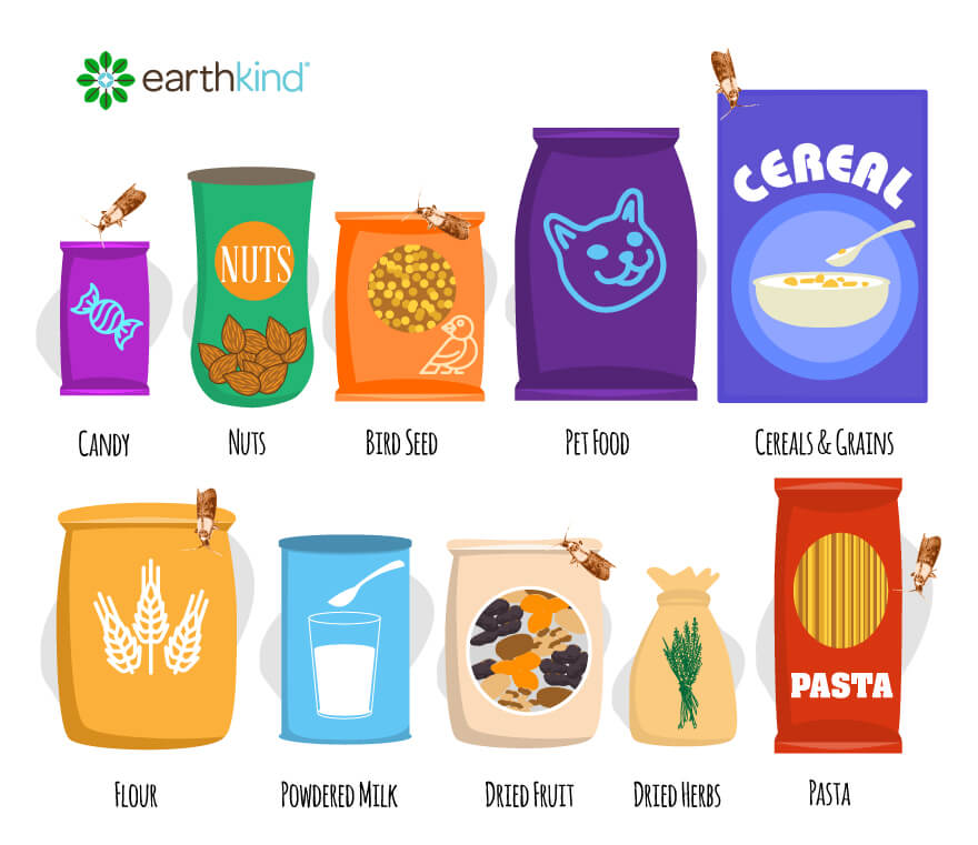 Pantry moths infest candy, nuts, birdseed, pet food, cereals and grains, flour, powdered milk, dried fruit, dried herbs, and pasta