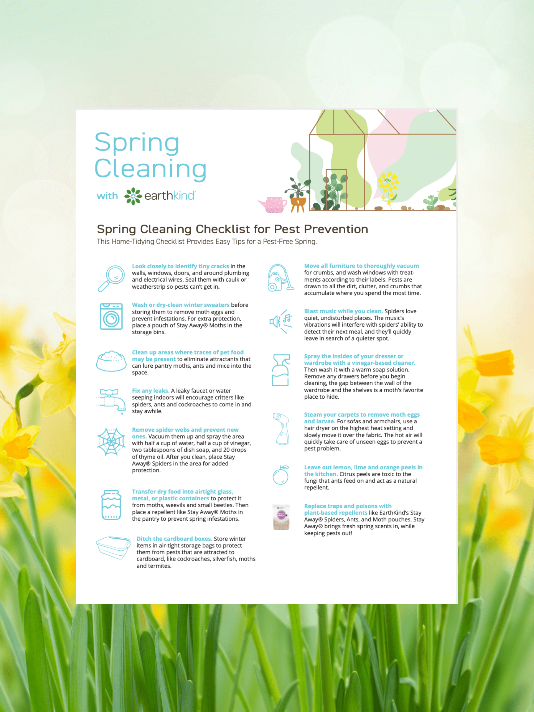 What You Need to Know About Spring Cleaning