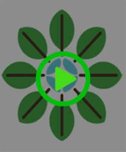 Shop Stay Away® Flower Green