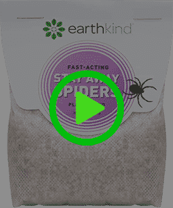 Shop Stay Away® Spiders