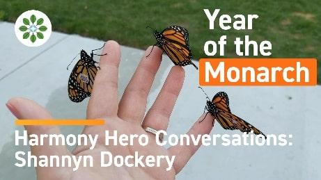 Harmony Hero Conversations Shannyn Dockery