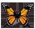 monarch-image